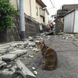 熊本被災者「犬猫に飲ませる水はねぇ!!!」