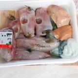 愛知・蒲郡のスーパーでフグ肝臓販売「絶対食べないで」