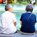 成人女性の7割は「100歳まで生きたくない」4人に1人は「夫には70歳まで働き続けてほしい」と回答