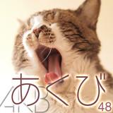 AKB48グループ 歌唱力No.1決定戦開催