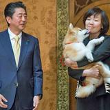 安倍昭恵さん、ロシア行きをめぐりけっこう批判出た