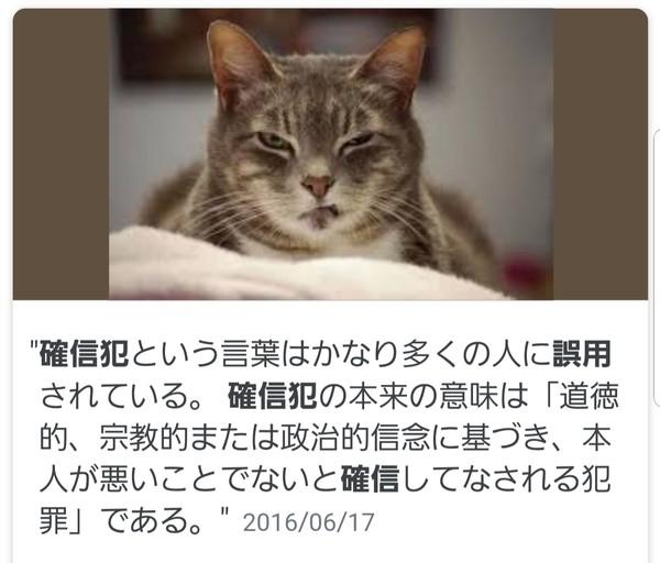 『KUNOICHI』確信犯すぎるセクシーアングルに賛否「高校生もいるのに…」:コメント10