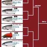 FIFAワールドカップ 日本ベスト8ならず